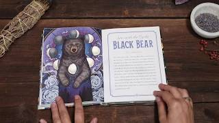 The Illustrated Bestiary: Guidance and Rituals from 36 Inspiring Animals (Book Trailer)