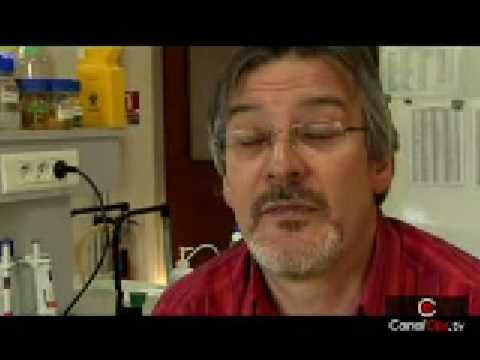Christian Vélot, qu'est-ce que l'OGM Mon 810 ?