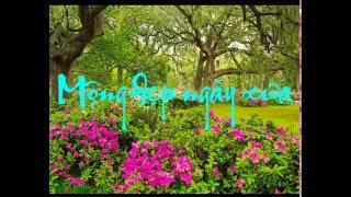 Mộng Đẹp Ngày Xưa - Nhạc Ngoại - Sáo Trúc