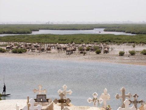 Saloum River, Bitenti Island, Fatick region in Senegal,  near the northern border with The Gambia