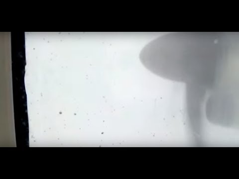 Insane turbulence in bad weather flight take off watch till end
