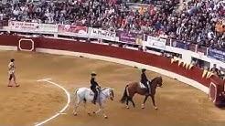 Corrida Paseo Vic Fezensac 2015 taureau  Cebada Gago