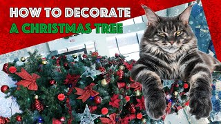 How to Decorate a Christmas Tree with a Maine Coon Cat