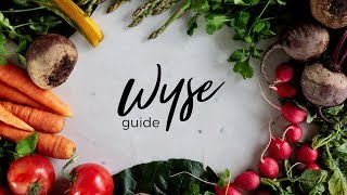 Welcome to the Wyse Guide