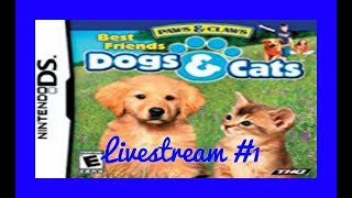 Paws and Claws Dogs and Cats Gameplay #1