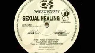 Luvspunge - Sexual Healing (Original Mix)