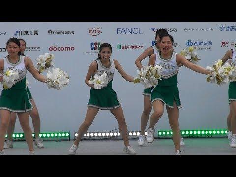 関東学院大 チアダンス部 Fits 2018 横浜セントラルタウンフェスティバル Y159 2/3