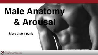 "Loveology University – ""Male Anatomy & Arousal"" Course Sneak Preview!"