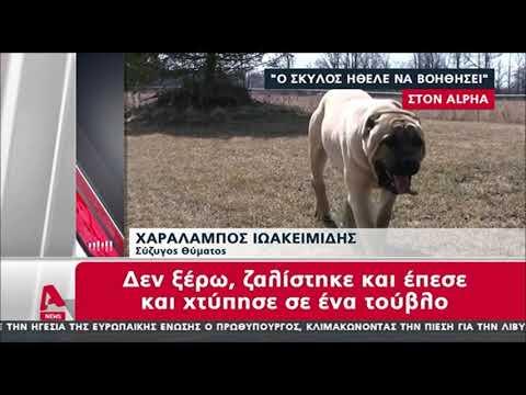 newsbomb.gr: Ανατροπή στην υπόθεση της άτυχης 69χρονης