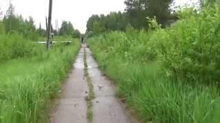 Икса — посёлок в Плесецком районе Архангельской области.