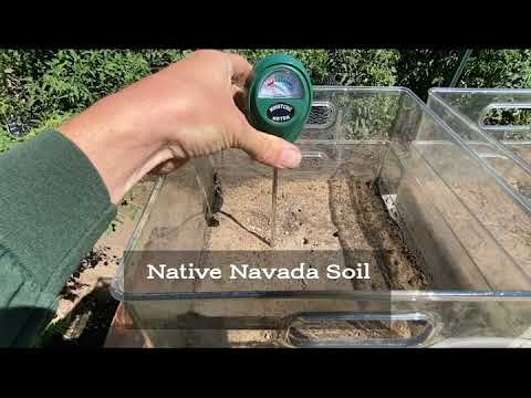 Save Water With Compost in Nevada Soil