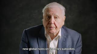 Sir David Attenborough explains why we need a new global deal to protect our oceans