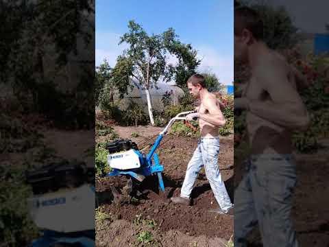 Пашем огород