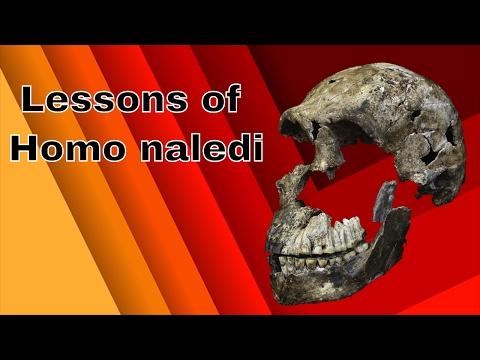Lessons of Homo naledi