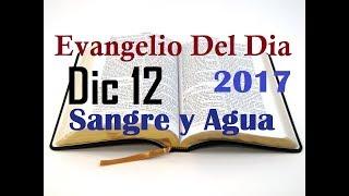 Evangelio del Dia- Martes 12 Diciembre 2017- La Virgen de Guadalupe-  Sangre y Agua