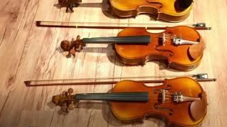 Gambar cover Violon Class - KHUUDUCHAI Music Class