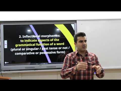 Morphology  (Linguistics / Dilbilim 68)