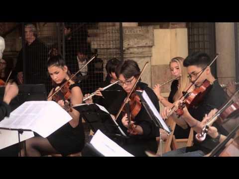 Danzalamente 2014 - Il concerto del Liceo Musicale Tenca di Milano