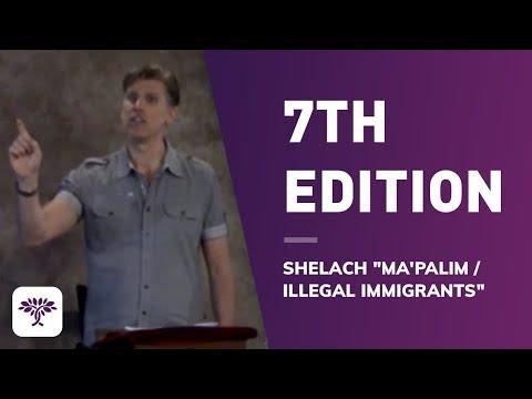 "7th Edition - Shelach ""Ma'palim / illegal immigrants"""