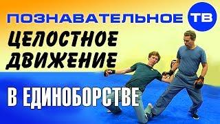 Целостное движение в единоборстве (Познавательное ТВ, Евгений Беляков)