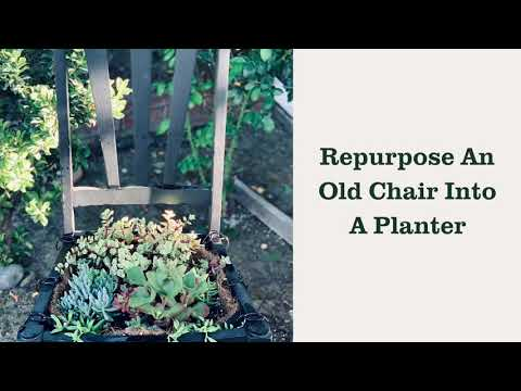 How to make a DIY chair planter