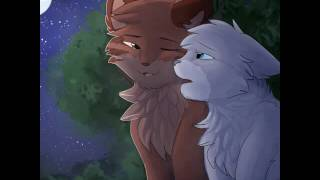 Коты воители  💜киса киса мяу мяу💜