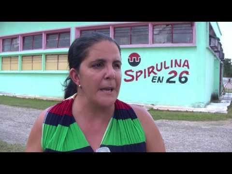 Laboran en la fabricación de Spirulina con motivaciones por el 26 de julio