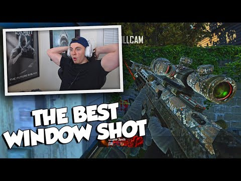 THE BEST WINDOW SHOT I'VE SEEN! (INSANE) BO2 Trickshotting