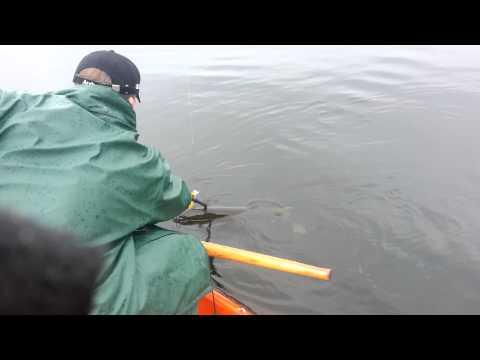 Oskar får fisk