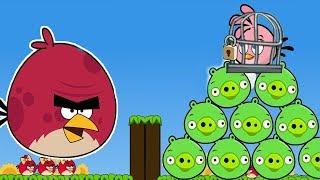 Angry Birds - Juegos Para Niños Pequeños - Angry Birds Cannon 3