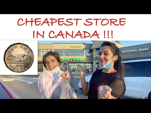 Cheapest Store In Canada || DOLLAR TREE || EVERYTHING 1.25$ 😲😲😲!! || PRAHALICKA || VLOG CANADA || #6