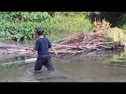 Pasang Pancing Sidat Di Sungai Dalam Dan jernih, Hasilnya Memuaskan