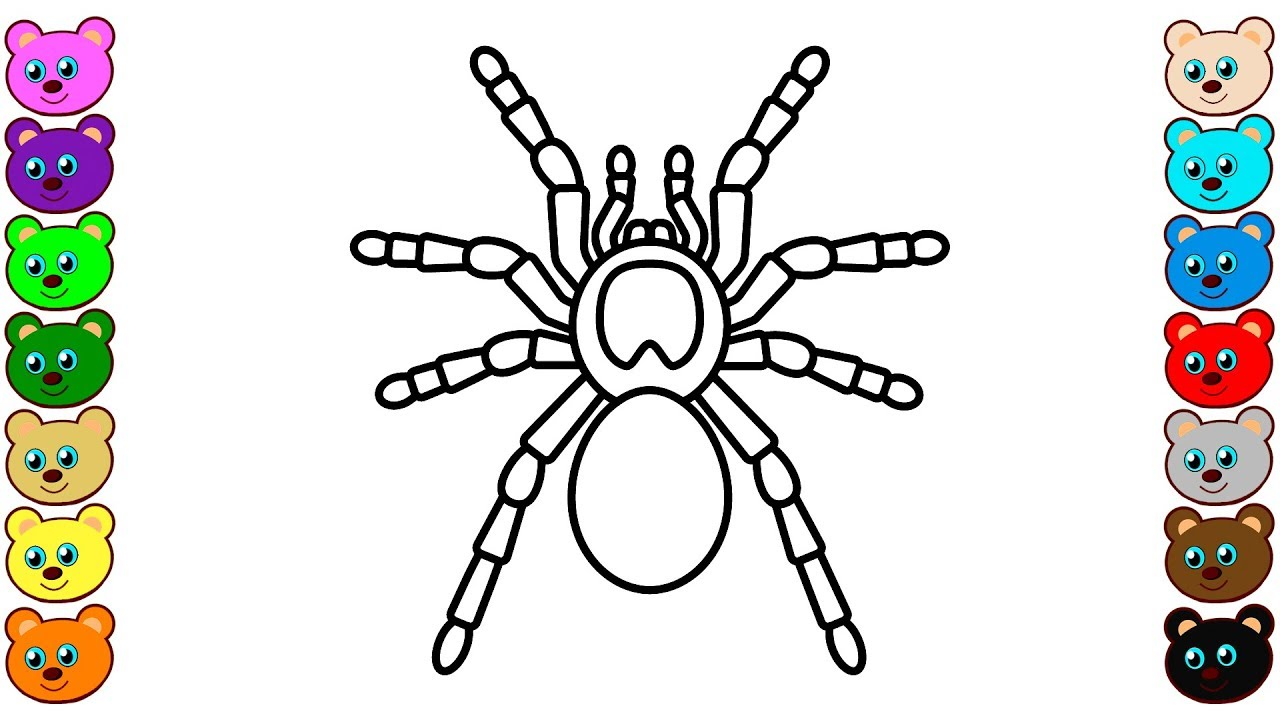 Coloring For Kids With Spider Tarantula