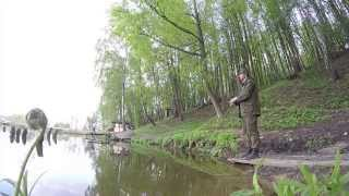 Ловля форели на платнике / area fishing