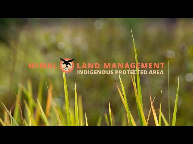 Mimal Indigenous Protected Area