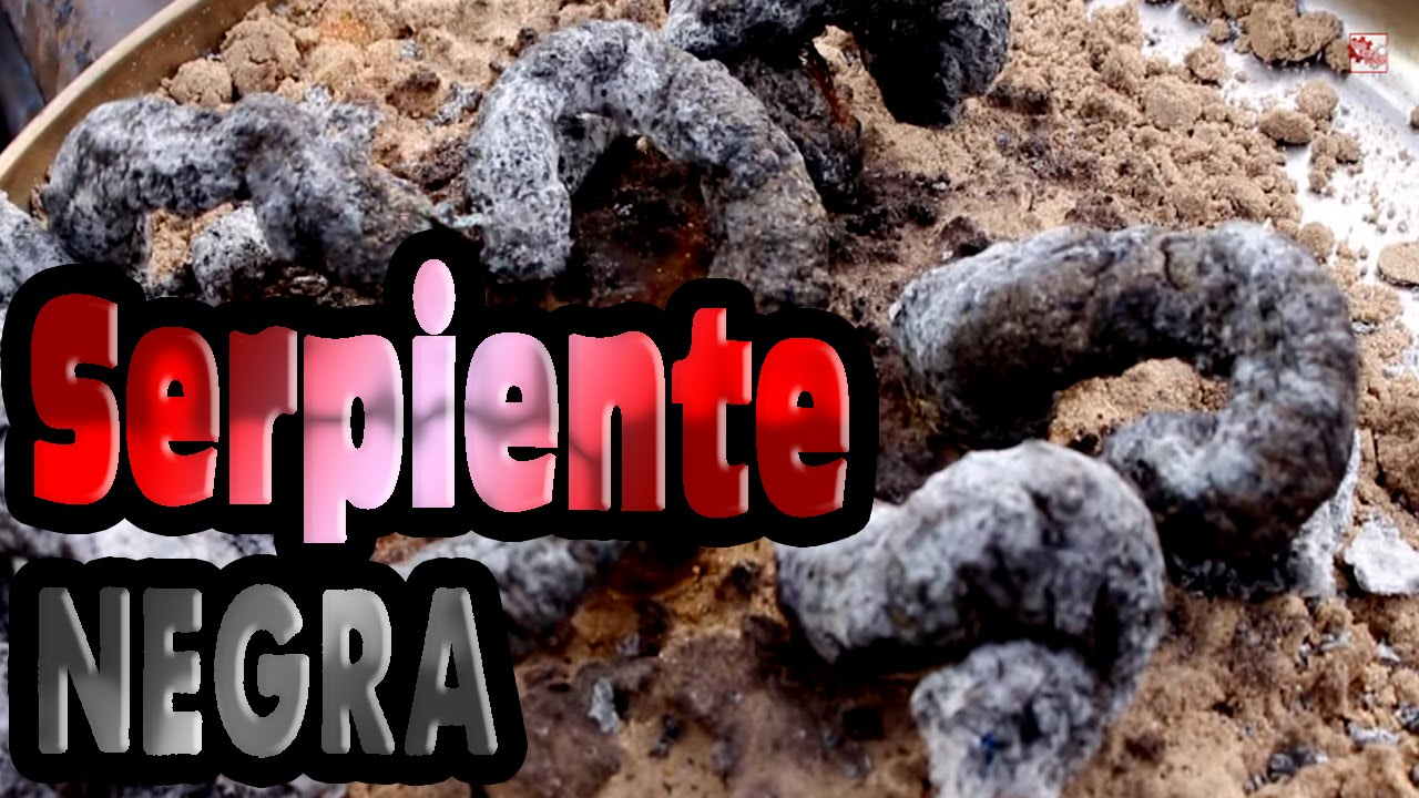 Serpiente negra   Experimento Fcil  YouTube