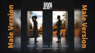 Download lagu Jonas Blue What I Like About You MP3