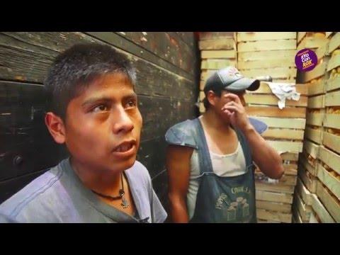 Roxana Luna: Entrevista A Estibadores De La Central De Abasto