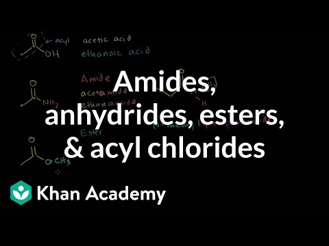 Amides, anhydrides, esters, and acyl chlorides | Organic chemistry | Khan Academy