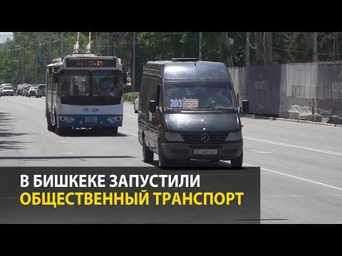 В Бишкеке запустили общественный транспорт