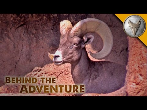 Arizona Sonora Desert Museum - Behind the Adventure