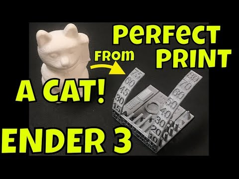 ENDER 3, CR-10 - Perfect Print Profile From A CAT ???!!!