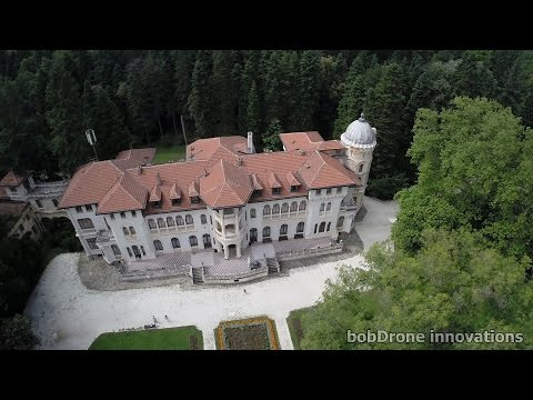 Aerial filming - The Palace And The Lake FPV