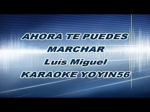 Luís Miguel Ahora Te Puedes Marchar Karaoke Coros Audio HQ