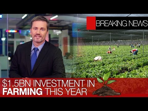 Samsung invest in Mexico | Mexican company & Trump's wall | Investment to protect farming industry