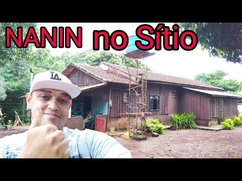 NANIN NO PARANÁ, CAMPINA DA LAGOA. parte 1