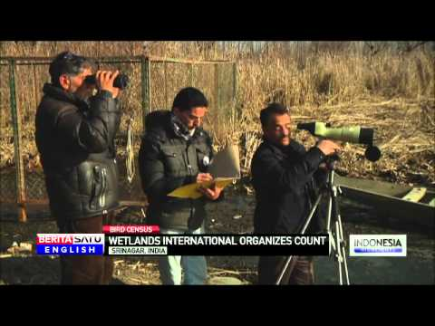 Kashmir Wildlife Wardens Begin Annual Bird Census