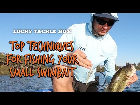 Top Techniques For Fishing Small Swimbaits