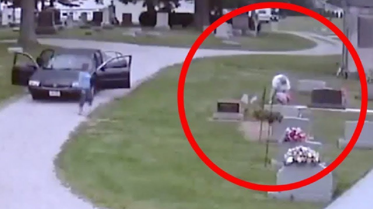 Download Grieving Parents Hide Camera in Cemetery to Unveil Their Unwelcome Visitor