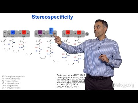 Chaitan Khosla (Stanford) Part 2: Dissecting Polyketide Assembly Lines